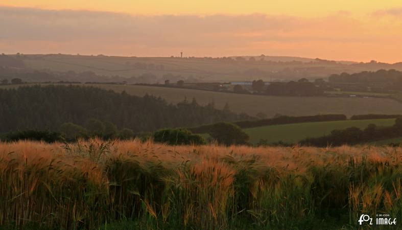 1st July 2015 - Cereal sunset © Ian Foster / fozimage